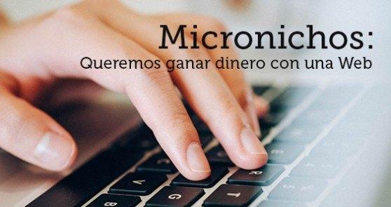 un micronicho te permite ganar dinero por internet