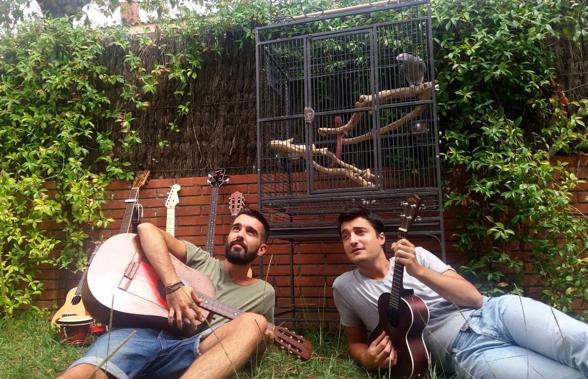 equipo snail music